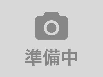 TOKYO LITTLE BAND